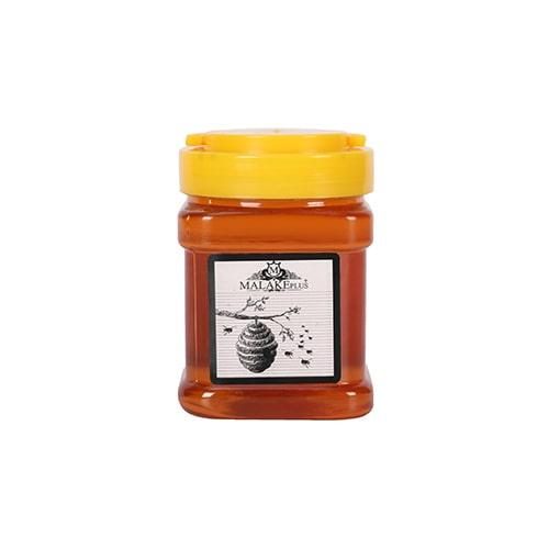 عسل گشنیز ملکه پلاس (500 گرم)